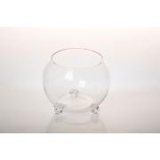 Glass8031